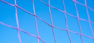 Leerlingen verslaan gymdocenten in volleybaltoernooi!